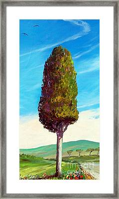 Il Cipresso Delle Lellere Framed Print by Sandro  Mulinacci