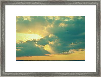 I'll Fly Away Framed Print