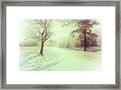 Illuminated By Sun On Snowy Forest Path Framed Print by Rambynas