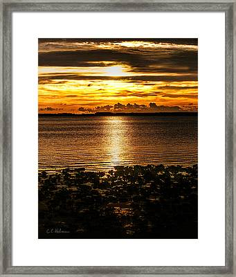 Illuminated Framed Print by Christopher Holmes