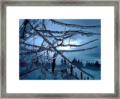Illumination Framed Print by Rory Sagner