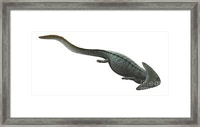 Illustration Of A Prehistoric Era Framed Print by Sergey Krasovskiy