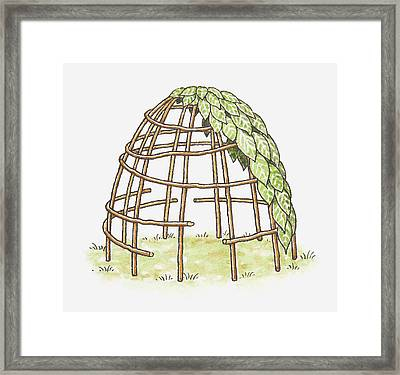 Illustration Of A Shelter In The Process Of Being Erected, Using Canes And Leaves Framed Print by Dorling Kindersley