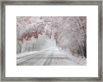I'm Dreaming Of A White Autumn Framed Print by Lori Deiter