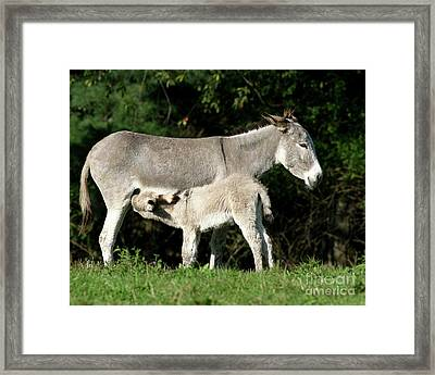 I'm Thirsty Framed Print