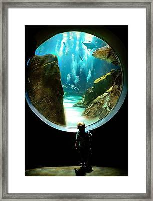 Imagination Framed Print by Anna Rumiantseva