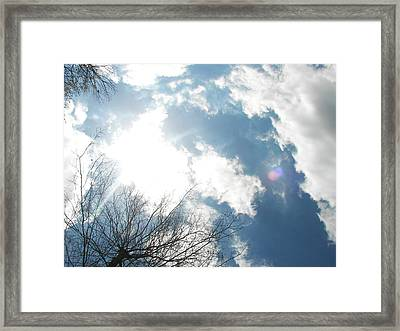 Framed Print featuring the photograph Imagination by Pamela Hyde Wilson