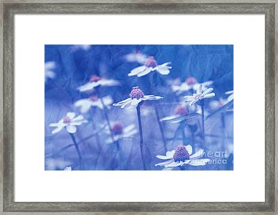 Imagine 06ht01 Framed Print