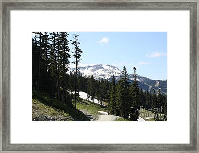 Img0100 Framed Print by Jane Whyte