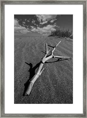 Immortal Sand Framed Print by Gabriel Calahorra