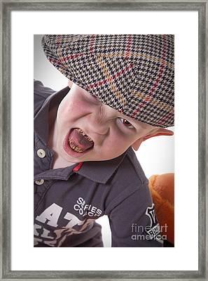 Imp Framed Print by Alexander Photography