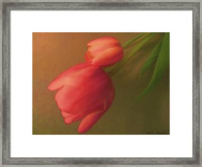 Impact Of Spring Framed Print by Debra     Vatalaro