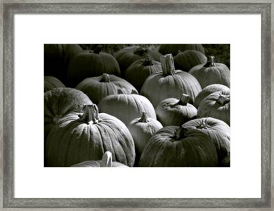 Imperfectly Beautiful Framed Print by Trish Mistric