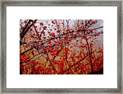 Impression Framed Print