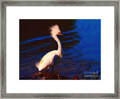 Impressions Of A Snowy Egret . Painterly Framed Print by Wingsdomain Art and Photography