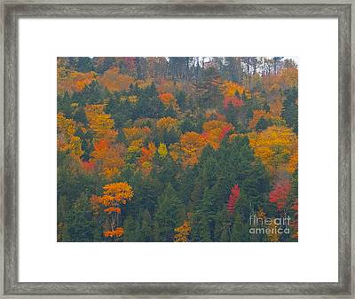 Imprssions Of Autumn Framed Print by Charles  Ridgway