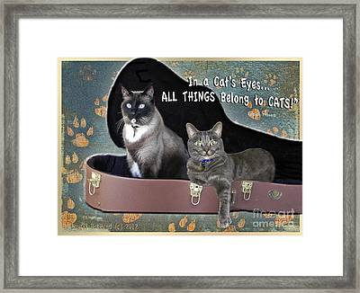 In A Cats Eyes Framed Print