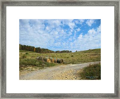 In A Country Field Framed Print by Darlene Bell