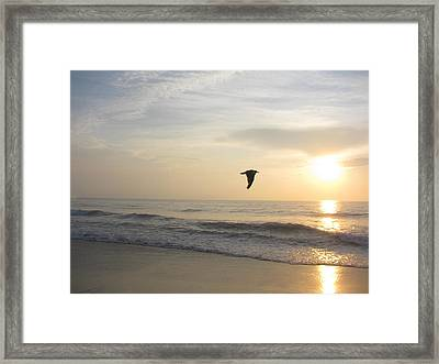 In Flight Framed Print by Jenna Mackay