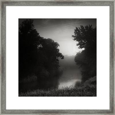In Floodplain Forest Framed Print by Jaromir Hron