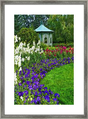 In Full Bloom Framed Print by Cindy Haggerty