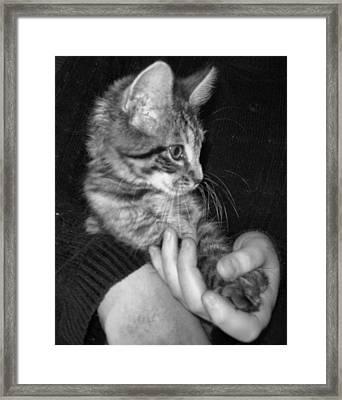 In Good Hands Framed Print by Juliana  Blessington