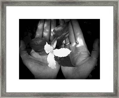 In My Hands Framed Print by Devon Stewart