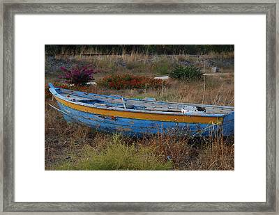 Framed Print featuring the photograph In Need Of Repairs by Caroline Stella