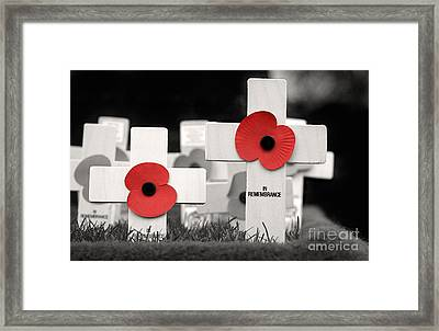 In Remembrance Framed Print by Jane Rix
