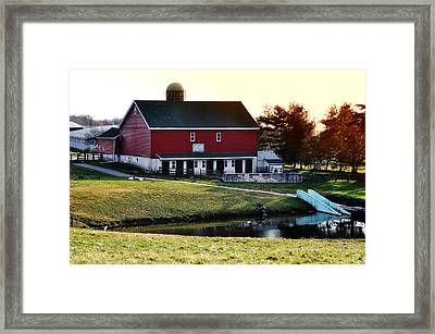 In The Barn Yard Framed Print by Bill Cannon