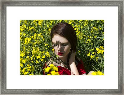 In The Canola Framed Print