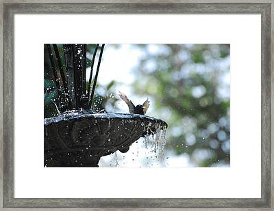 Framed Print featuring the photograph In The Cool Of The Morning #3 by Linda Cox