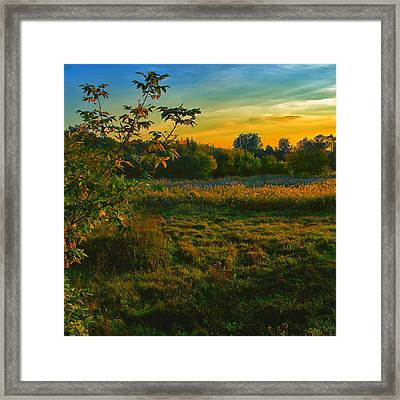 In The Evening On The River Framed Print by Gennadiy Golovskoy