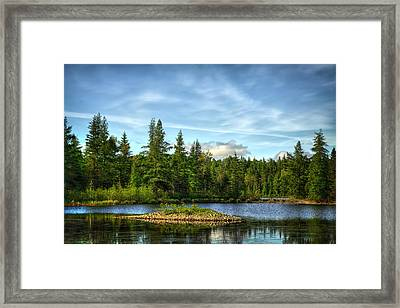 In The Forest Framed Print by Gary Smith