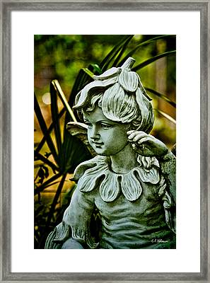 In The Garden Framed Print by Christopher Holmes