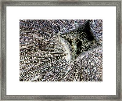 In The Grass Framed Print by Rheo