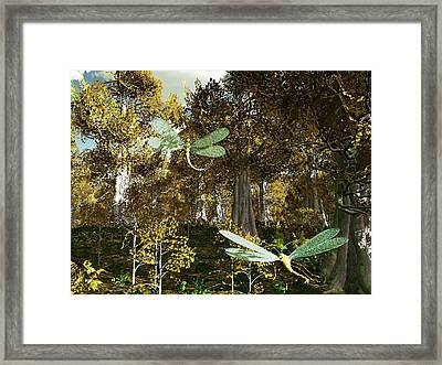 In The Mallorn Wood Framed Print by Diana Morningstar