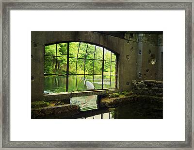 In The Moment Framed Print by Jack Zulli