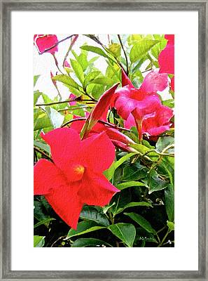In The Pink Framed Print by Brian D Meredith