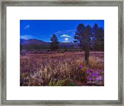 In The Twilight Framed Print