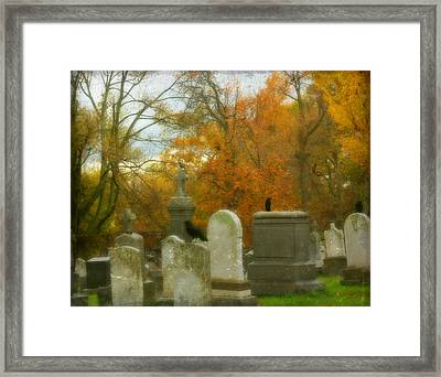 In Their Glory Framed Print