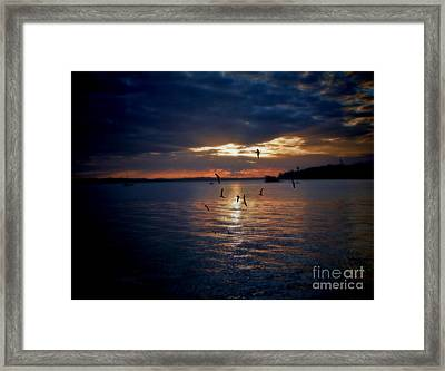 In To The Light Framed Print by Karen Lewis