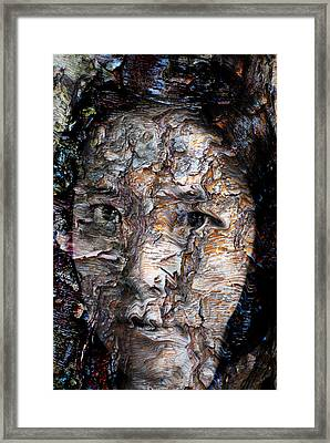 In Transition Framed Print by Christopher Gaston