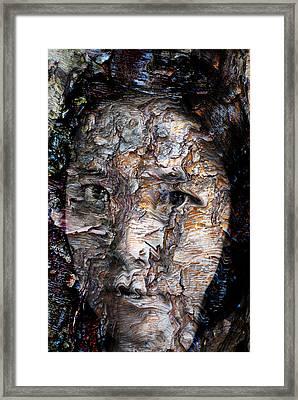 In Transition Framed Print