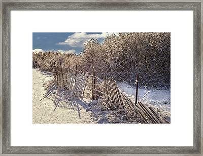 Framed Print featuring the photograph In Winter's Chill by Yelena Rozov