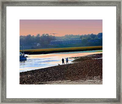 Incoming Gull From Dog Beach Series Framed Print by Alene Sirott-Cope