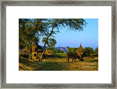 Indian Farm Framed Print