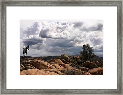 Indian Pony In The Dells Framed Print