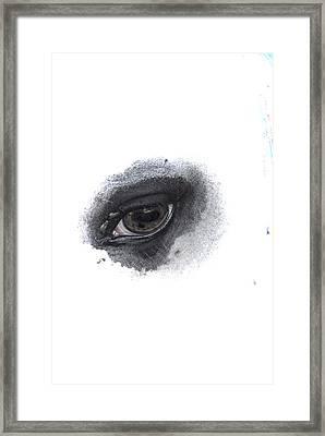 Indys Eye Framed Print