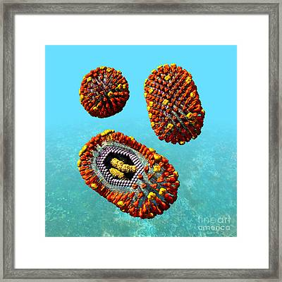 Influenza Virus Scene 1 Framed Print